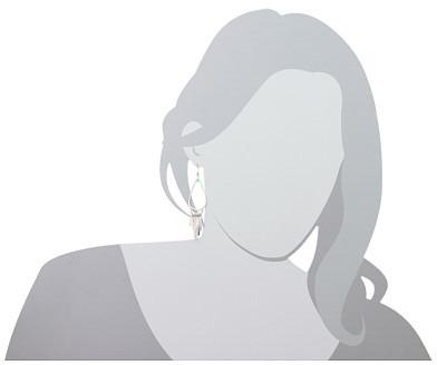 Lucky Brand Dangling Silver Oblong Earrings
