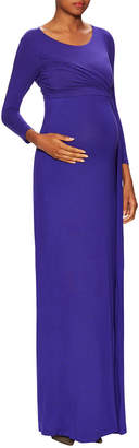 Isabella Oliver Hayden Maternity Dress