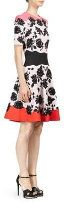 Alexander McQueen Rose-Print A-Line Dress