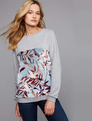 Pietro Brunelli Santa Monica Maternity and Nursing Sweatshirt