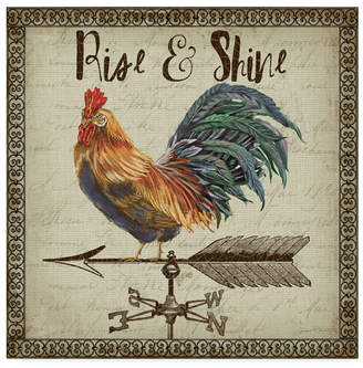 """Jean Plout 'Rustic Rooster Vane 4' Canvas Art - 24"""" x 24"""""""