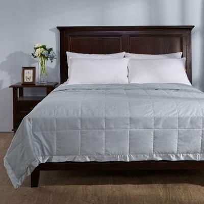 Wayfair Light Weight Down Duvet Insert with Satin Weave