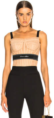 Dolce & Gabbana Tulle Corset Top