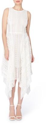 Women's Catherine Catherine Malandrino Webb Lace Midi Dress