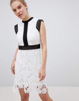 Liquorish Contrast Lace Skater Dress