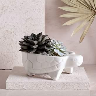 west elm Ceramic Turtle Planter