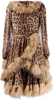Dolce & Gabbana feather trim leopard-print dress