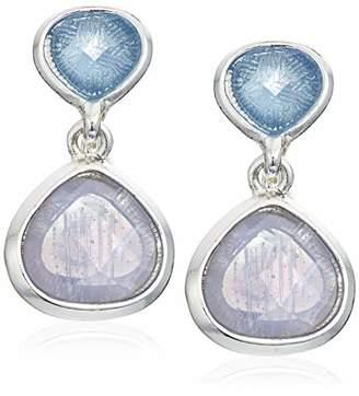 Anne Klein Women's Silver Tone Stone Clip Drop Earrings