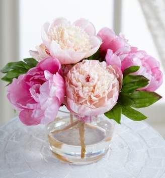 Soft Surroundings Peony in Tall Glass Vase