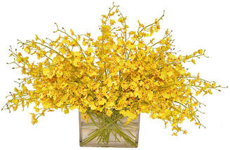 """22"""" Oncidiums in Glass Vase - Yellow - The French Bee"""