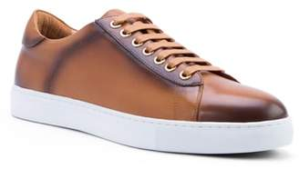 Zanzara Music Low Top Sneaker