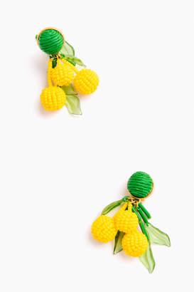 Petite Cluster Earrings