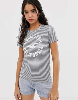 Hollister t-shirt with classic logo in stripe