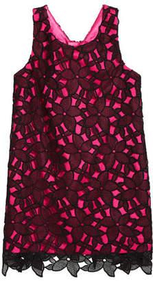 Milly Kat Bow-Back Sleeveless Lace Shift Dress, Size 4-6