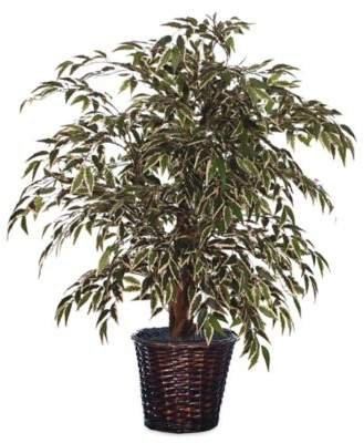4-Foot Fabric Variegated Smilax Extra-Full Bush with Dark Brown Rattan Basket