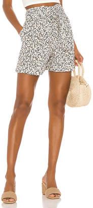 Jens Pirate Booty Miami Shorts