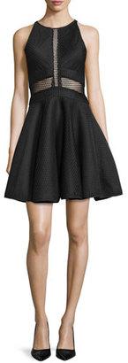 ZAC Zac Posen Corinne Sleeveless Illusion-Bodice Fit & Flare Dress $295 thestylecure.com
