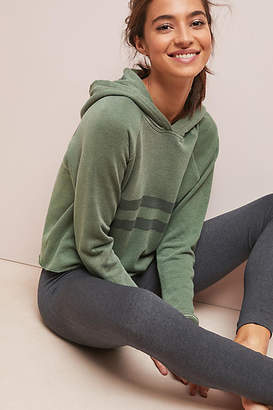 Sundry Cropped Stripe Hoodie