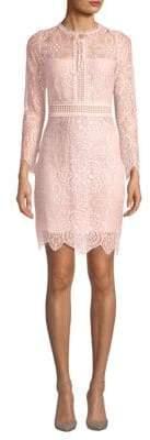 Scalloped Lace Cotton Bodycon Dress