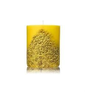 Acqua di Parma Fruit & Flower Candle - Mimosa