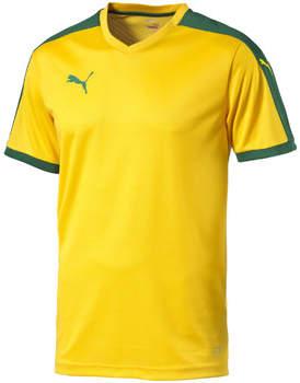 T-Shirt Pitch Shortsleeved Shirt