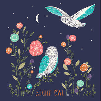 GreenBox Art 'Night Owl' Graphic Art Print on Canvas
