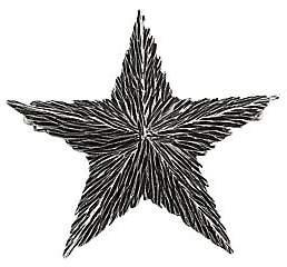 Saint Laurent Women's Star Brooch