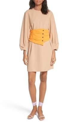 Tibi Shirred Sleeve Corset Dress