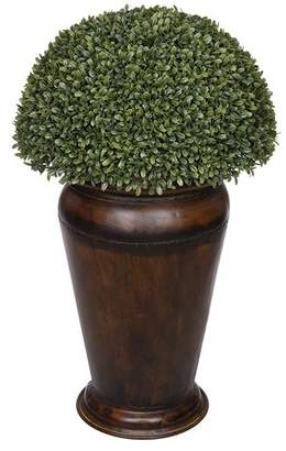 House of Silk Flowers Artificial Boxwood Topiary in Decorative Vase Base
