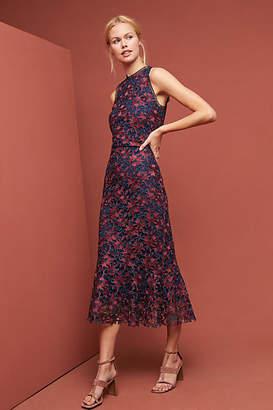 Shoshanna Two-Toned Lace Dress