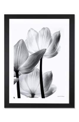 iCanvas 'Translucent Tulip' Giclee Print Framed Canvas Art