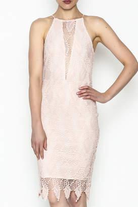 Ark & Co Lace Bodycon Dress
