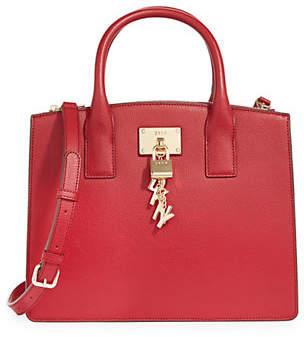 DKNY Elissa Leather Crossbody Bag