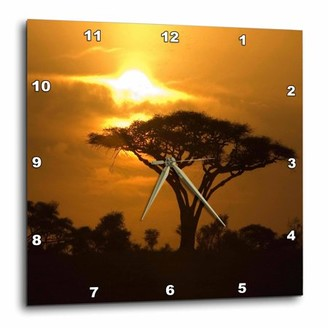 3dRose Thorn Acacia Umbrella Tree on African Plains at Sunset Tropical Night Scene, Wall Clock, 13 by 13-inch