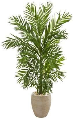 Bay Isle Home Areca Floor Palm Tree in Planter
