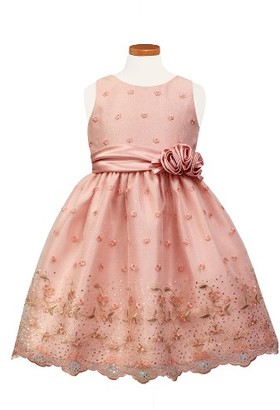 Toddler Girl's Sorbet Flower Embroidered Party Dress $67 thestylecure.com