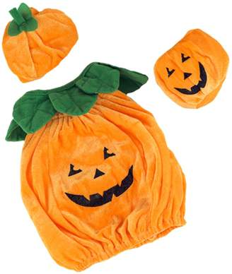 Teddy Mountain Teddy Pumpkin Outfit