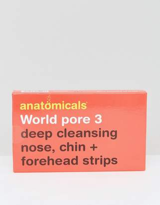 Anatomicals World Pore 3 - Deep Cleansing Nose Chin & Forehead Strips