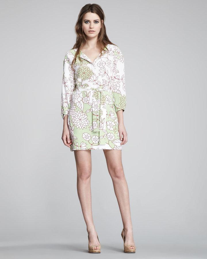 Diane von Furstenberg Julieta Printed Shirtdress