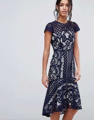 Coast Dee Dee Lace Dress