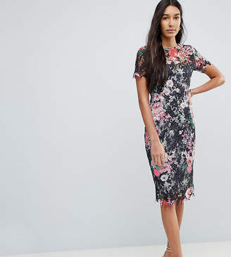 Paper Dolls Tall All Over Floral Printed Lace Pencil Dress