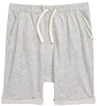 Stem Beach Shorts (Toddler Boys, Little Boys & Big Boys)