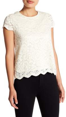 Philosophy Apparel Cap Sleeve Lace Tee (Petite)