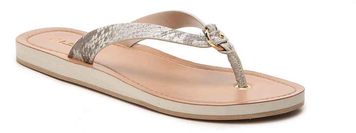 Aldo Women's Dorsten Flat Sandal