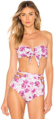 BOAMAR Dance Strapless Bikini Top