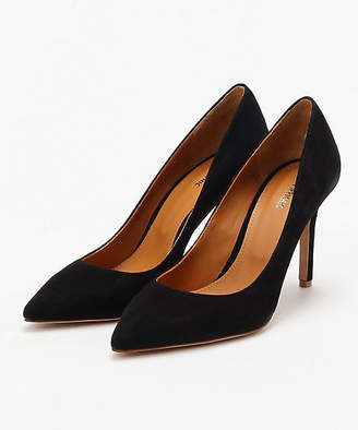 Pippi (ピッピ) - [PIPPICHIC] Pointed toe 8.5cm heel(PP18-PPP10)