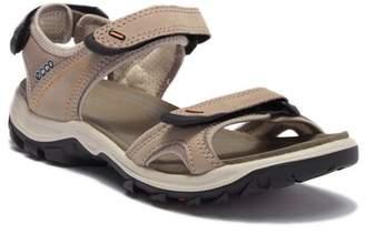 Ecco Offroad Lite Sandal