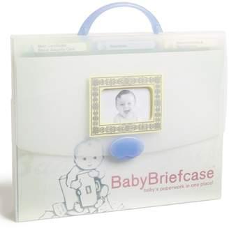 BabyBriefcase(R) Document Organizer