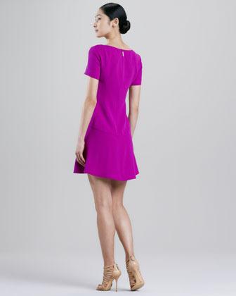 Rachel Roy Mini Fit-and-Flare Dress