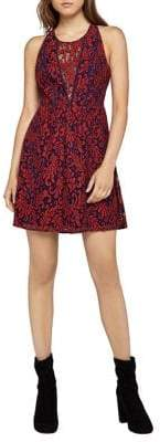 BCBGeneration Corded Lace Fit-And-Flare Dress